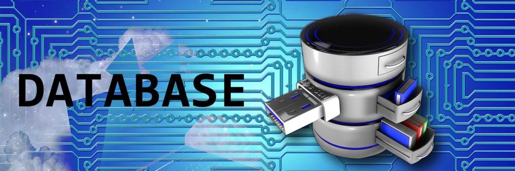 Actualización de bases de datos